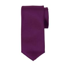 Carnét - Trevor slips ensfarvet - Blomme